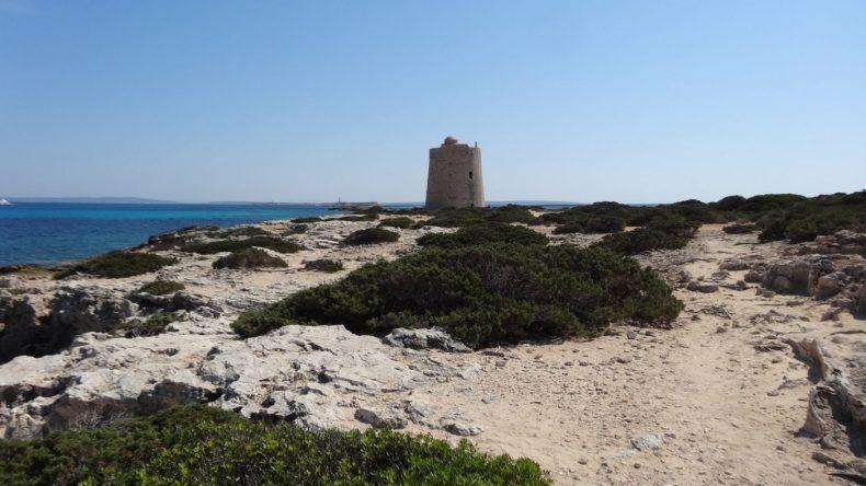 In der Nähe des Strandes Ses Salines