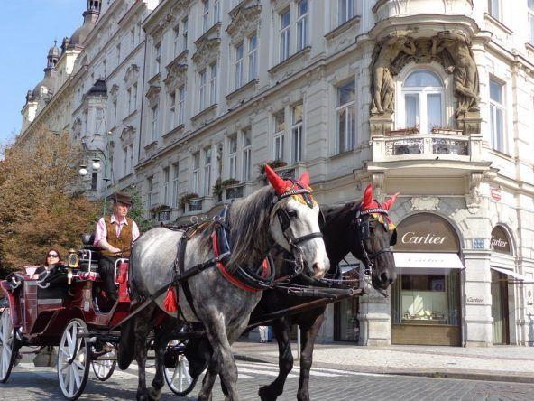 Wie früher: Mit der Kutsche durch die Altstadt