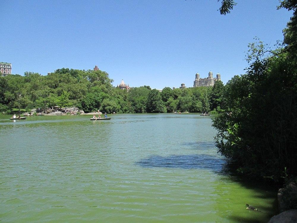 Bootfahren im Central Park