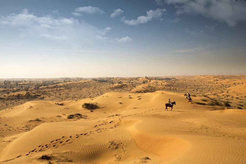 In Ras Al Khaimah könnt ihr zwischen zahlreichen Wüstenerlebnissen wählen