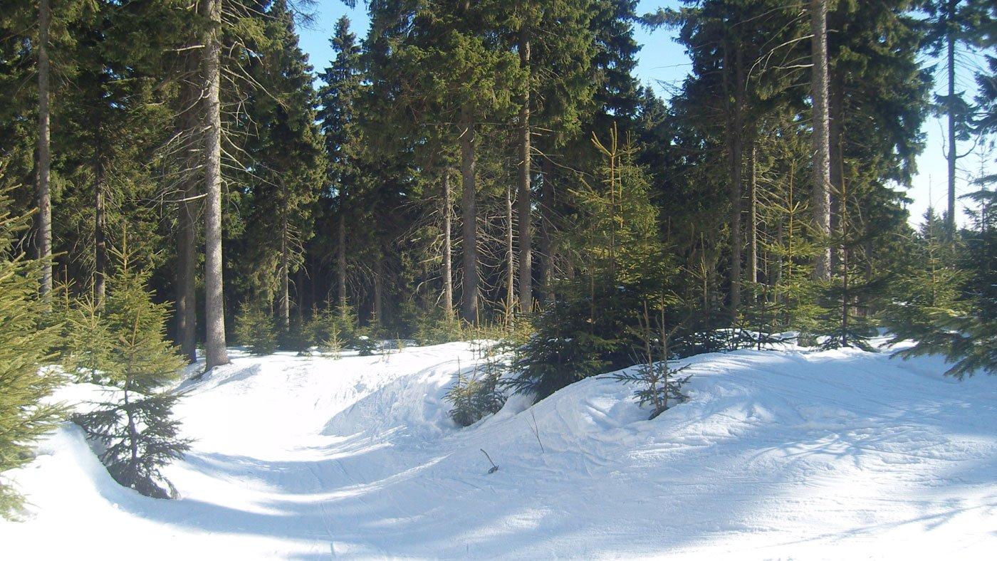 Tschechiens schöne Winterlandschaft