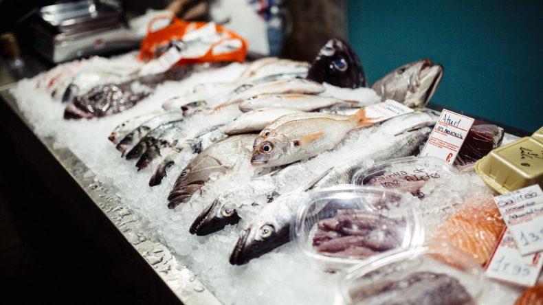 Fisch zum Mitnehmen, bitte! (Fotocredit: Herz und Blut)