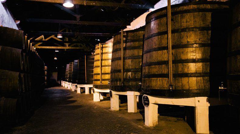 Hier stehen die ersten Weinfässer (Copyright: ohhedwig)