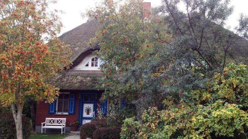 Nur eines von vielen der schönen Reetdachhäuser an der Ostsee
