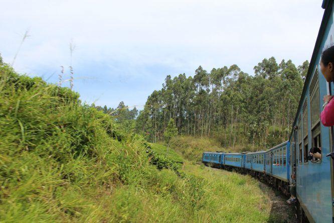 Reiseziele 2017: Sri Lanka
