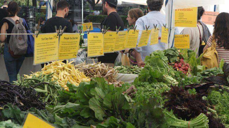 Mein Tipp für alle, die selber kochen wollen: Der Union Square Greenmarket