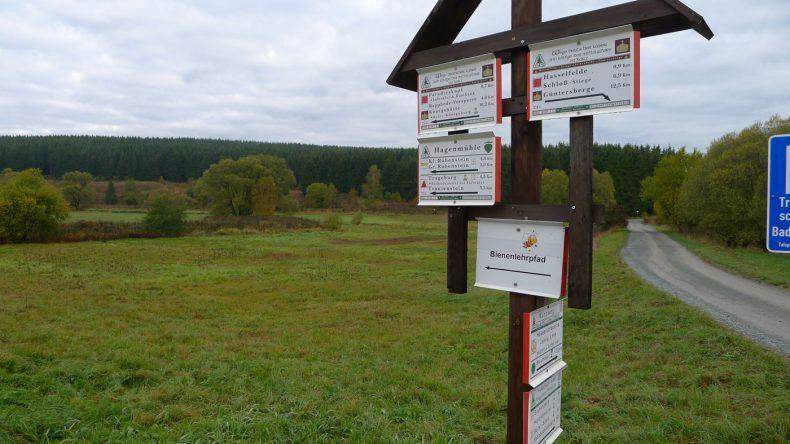 Im Harz erwarten euch zahlreiche Wanderwege und Lehrpfade!