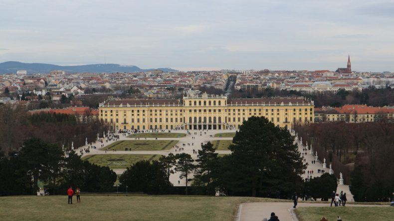 Vom Berg habt ihr eine wundervolle Sicht auf Wien