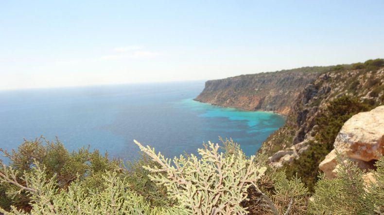 Küste Formentera
