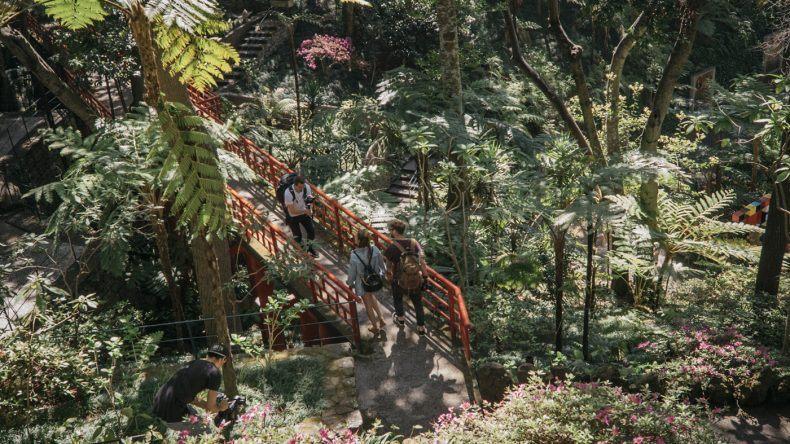 Jardim Tropical Madeira