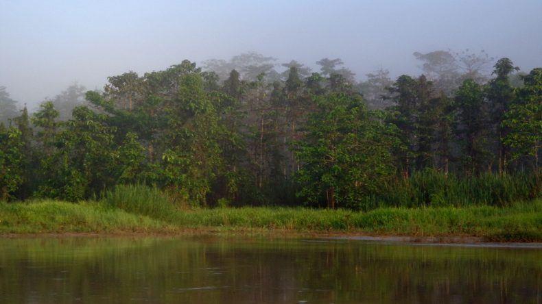 Außergewöhnliches Reiseziel: Borneo