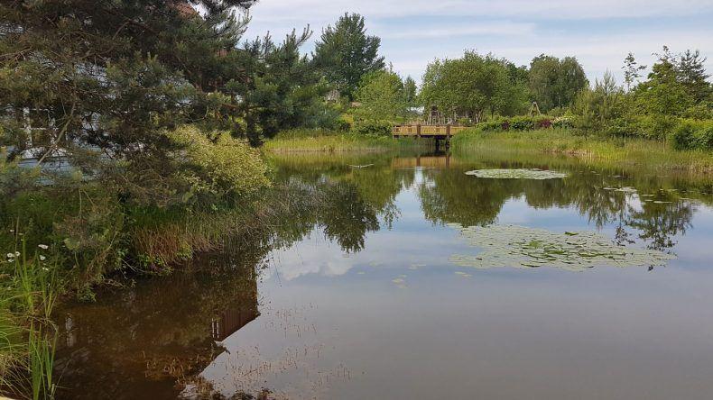 Das Dorfhotel Fleesensee liegt an einem Teich