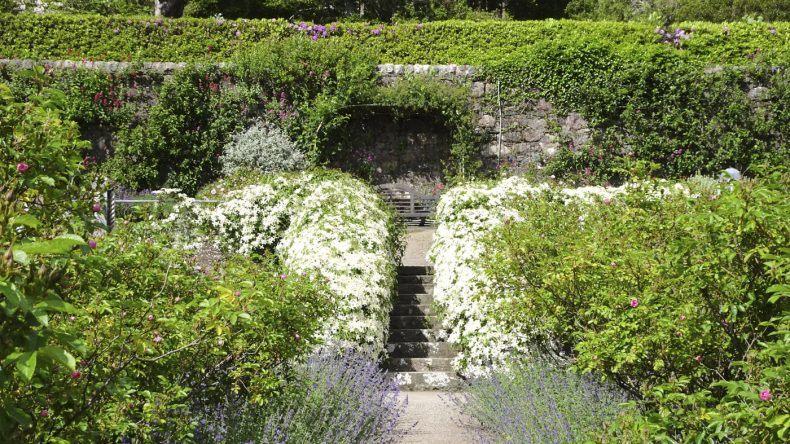 Schottische Gärten