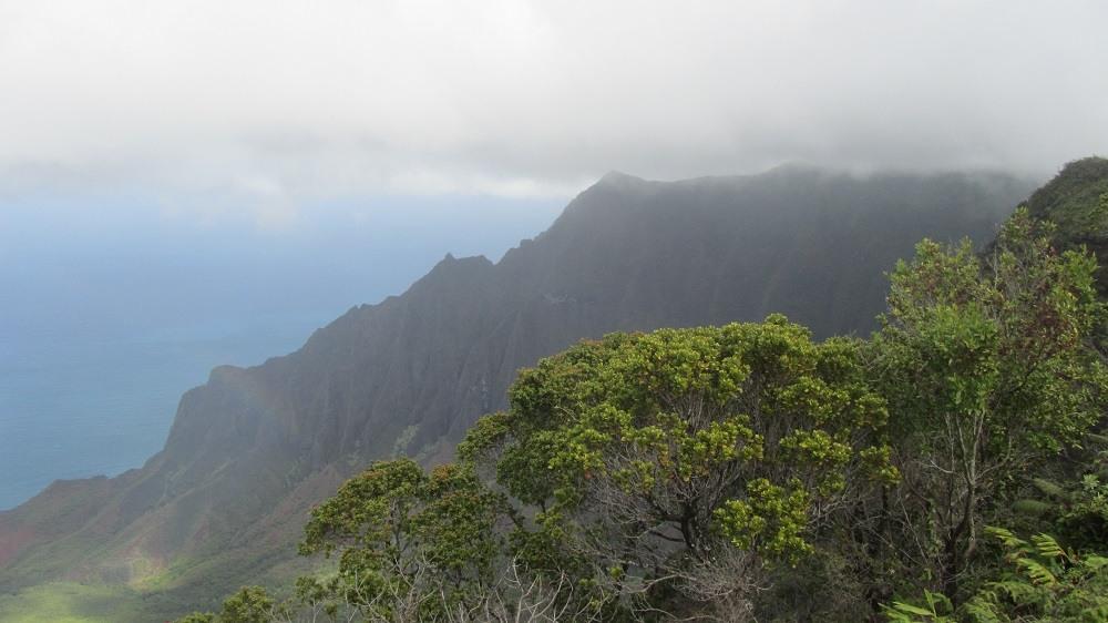 Inselhüpfen auf Hawaii - Besuch der Jurassic Park Insel Kauai