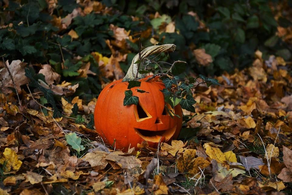 Ein spannendes Reiseziel im Oktober ist New York: Hier könnt ihr Halloween mitfeiern!