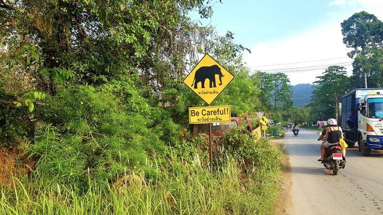 Hinweisschild Elefanten kreuzen