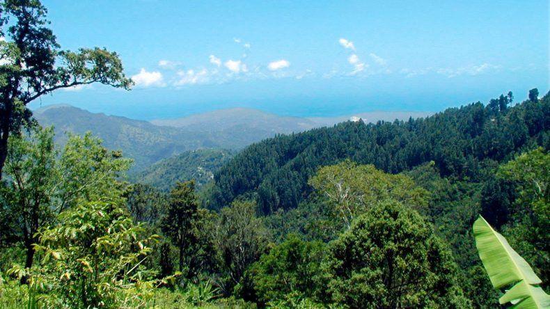 Blick über die Blue Mountains
