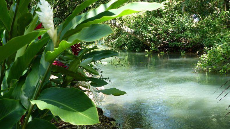 Frenchman's Cove auf Jamaika (Copyright: Jamaica Tourist Board)