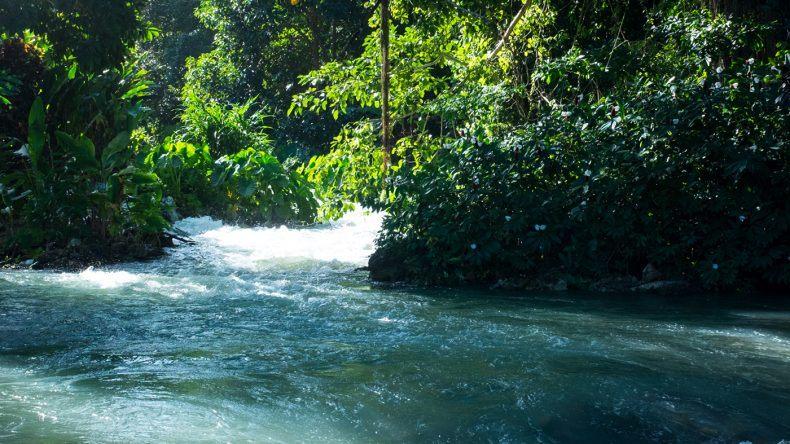Roaring River in Jamaika