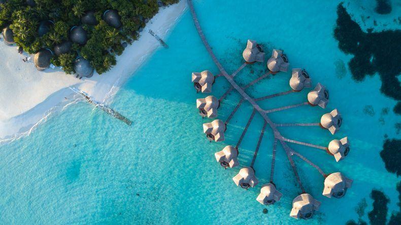 Ein Traum in blau-weiß: Das Coco Palm Dhuni Kolhu
