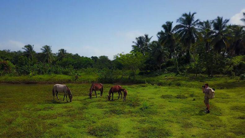Die vielfältige Landschaft der Dominikanischen Republik