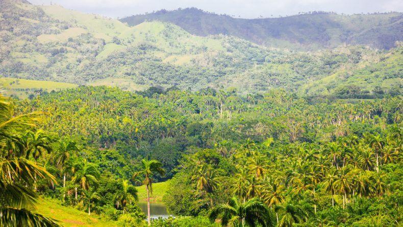 Saftig grün ist das Hinterland der Dominikanischen Republik (Shutterstock/laesperanza)