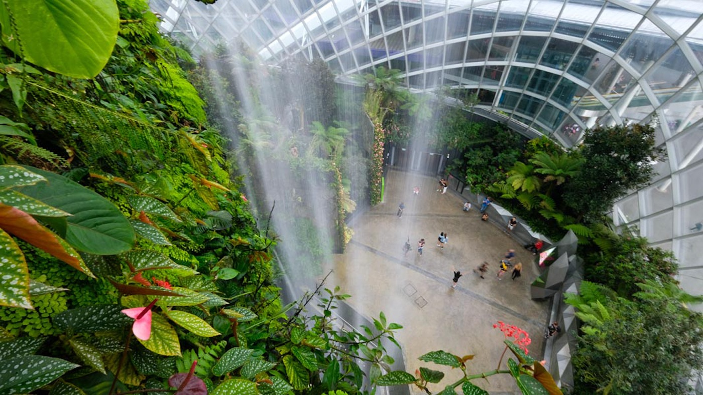 Gardens by the Bay: The Fall