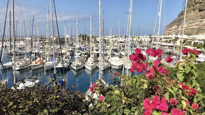 Der kleine Hafen von Puerto de Mogán.