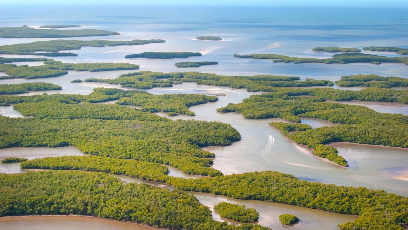 Blick von oben auf die Ten Thousand Islands