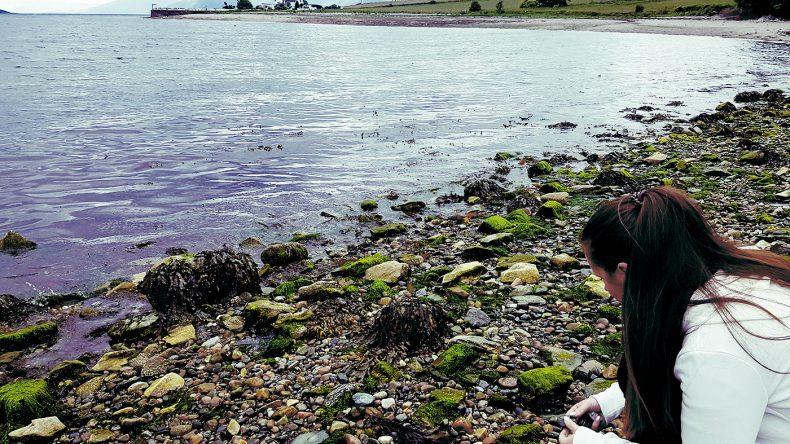 Die friedliche Natur am Atlantik genießen
