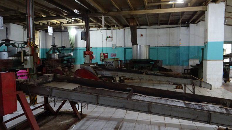 Einblick in die besuchte Teefabrik