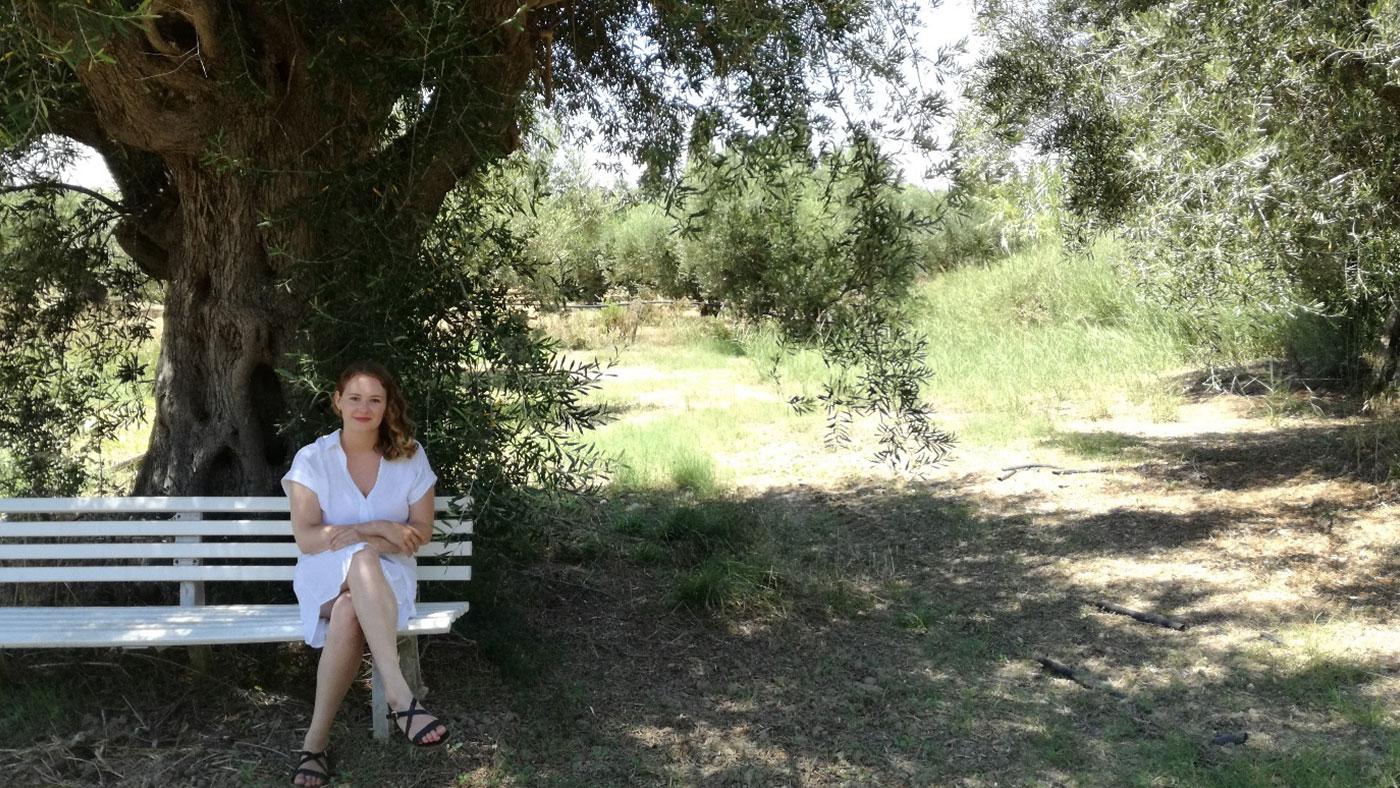 In einem Olivenhain