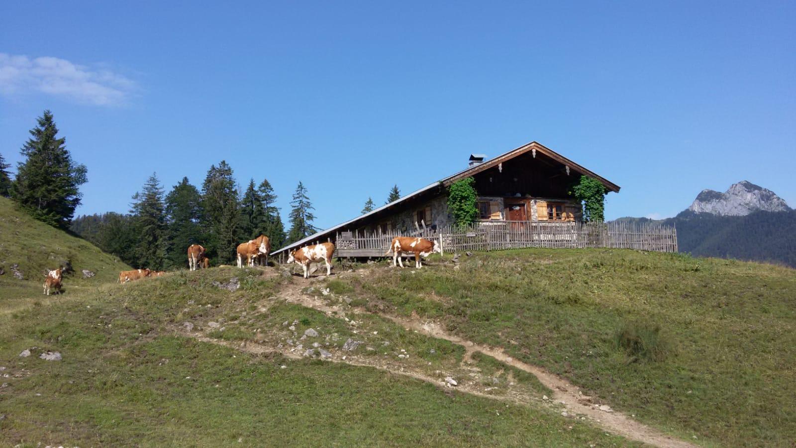 Von Kreuth nach Achenwald