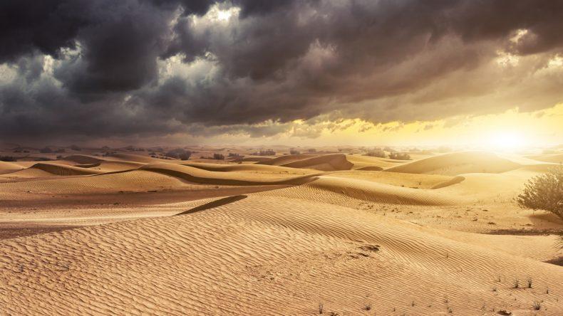 5. Die Sahara ist ein MUSS!