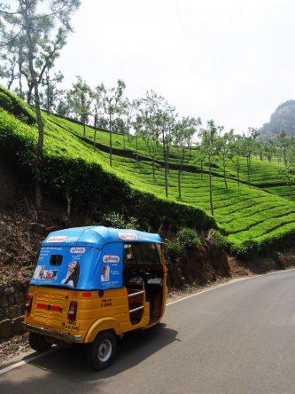 Mit dem Tuktuk ging es hupend durch die Berge.