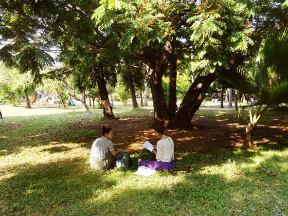Weitere Reiseplanung im Park von Pondicherry.