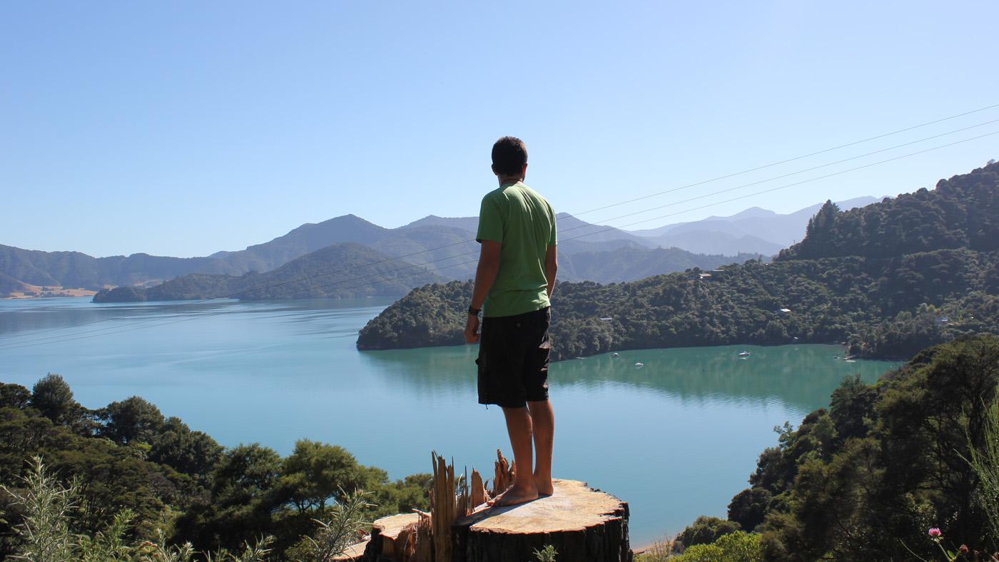 Der Kenepuru Sound besticht durch sein ruhiges, türkis-blaues Wasser.
