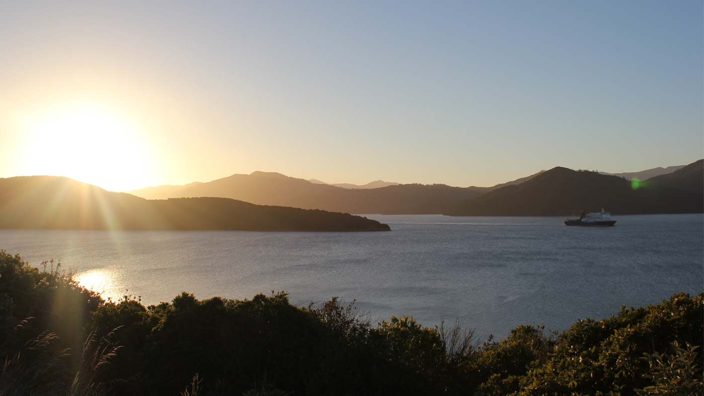 Im nördlichen Picton legen alle Fähren der Nord-Süd Fährverbindung an. Die letzten 30 km fährt man dabei durch die malerischen Northern Sounds.