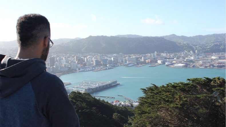 Vom Mount Victoria Lookout hat man einen tollen Ausblick auf Wellington und die umgebenen Buchten.