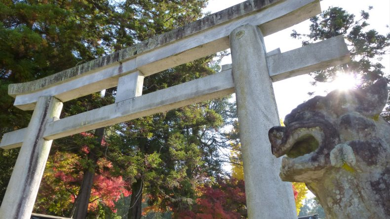 Der weitläufige Park um den Todai-ji Tempel lädt zum stundenlangen Schlendern und Entdecken ein.