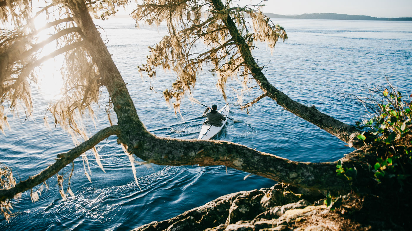 Wunderschöne Landschaften und Panoramen an jeder Ecke - auch in den Kootenay Rockies