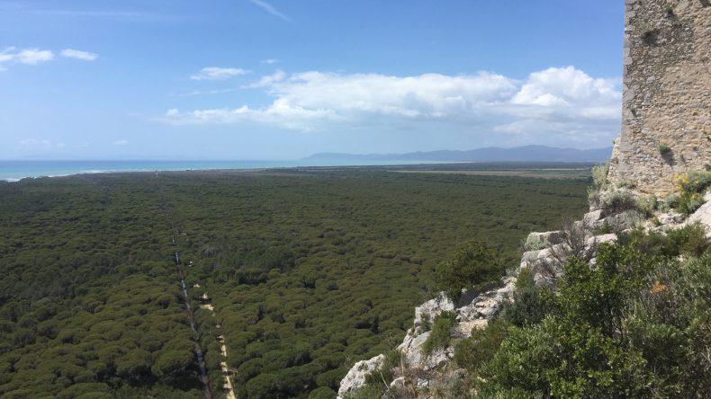 Von den Turmruinen im Park genießen wir die fantastische Aussicht auf die Umgebung.