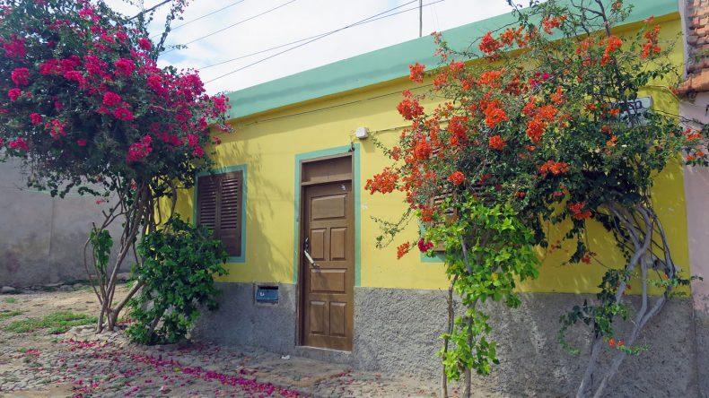 Bunt gestrichene Häuser und üppig wachsende Blumen: In den kapverdischen Dörfern dürft ihr euch auf viele Fotomotive freuen.