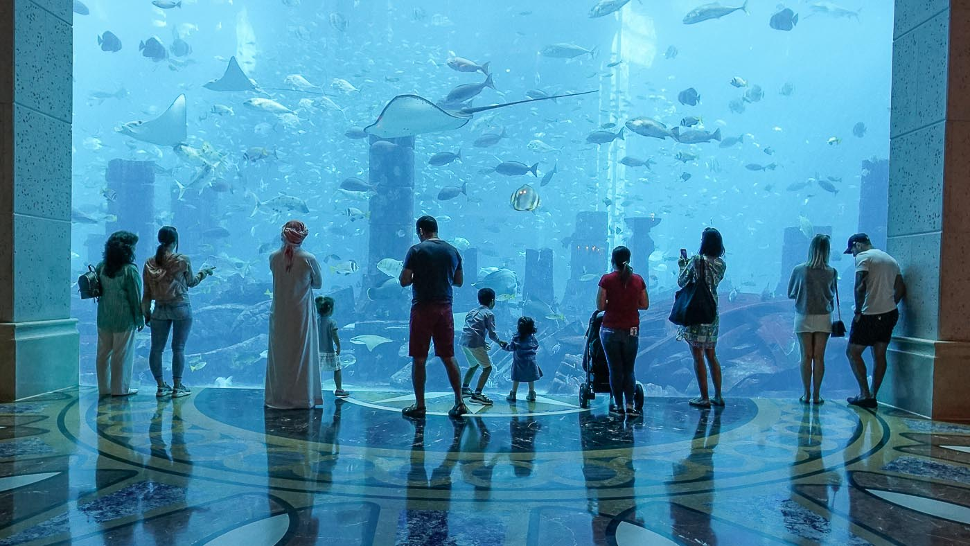 Beeindruckend! Das Lost Chambers Aquarium im Atlantis The Palm