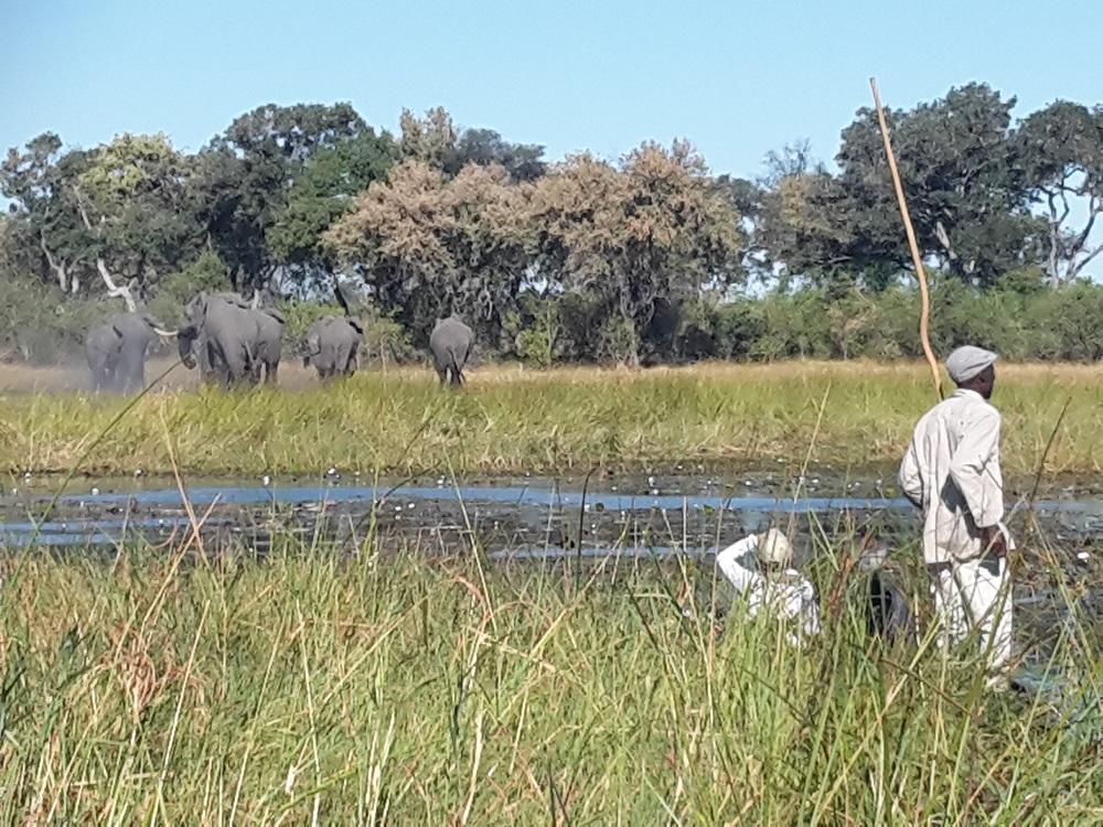 Botswana vom Wasser aus erleben