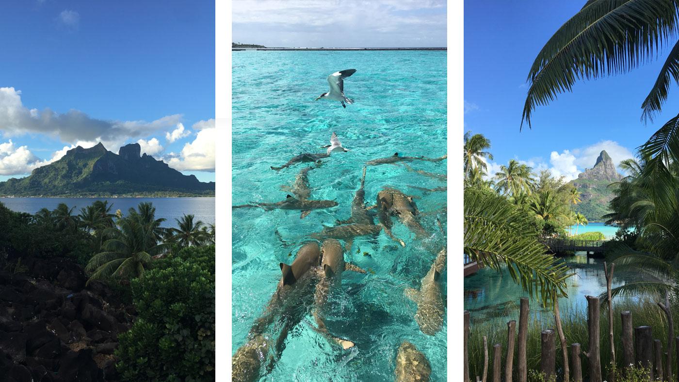 Bora Bora: Blick auf den Mont Otemanu - die höchste Erhebung des Atolls (l. + r.). In der Mitte seht ihr Haie, die sich hier tummeln.
