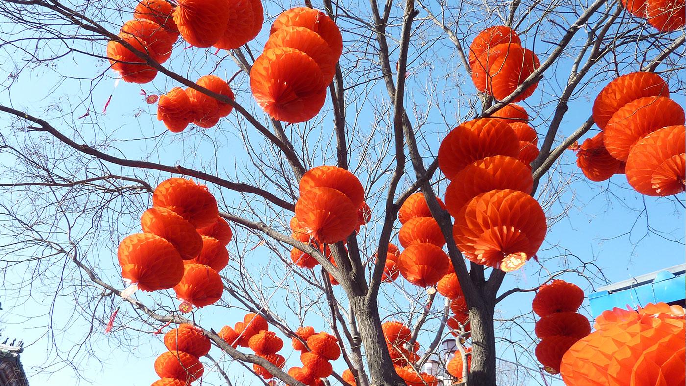 Chinesisches Neujahr im Park, Peking