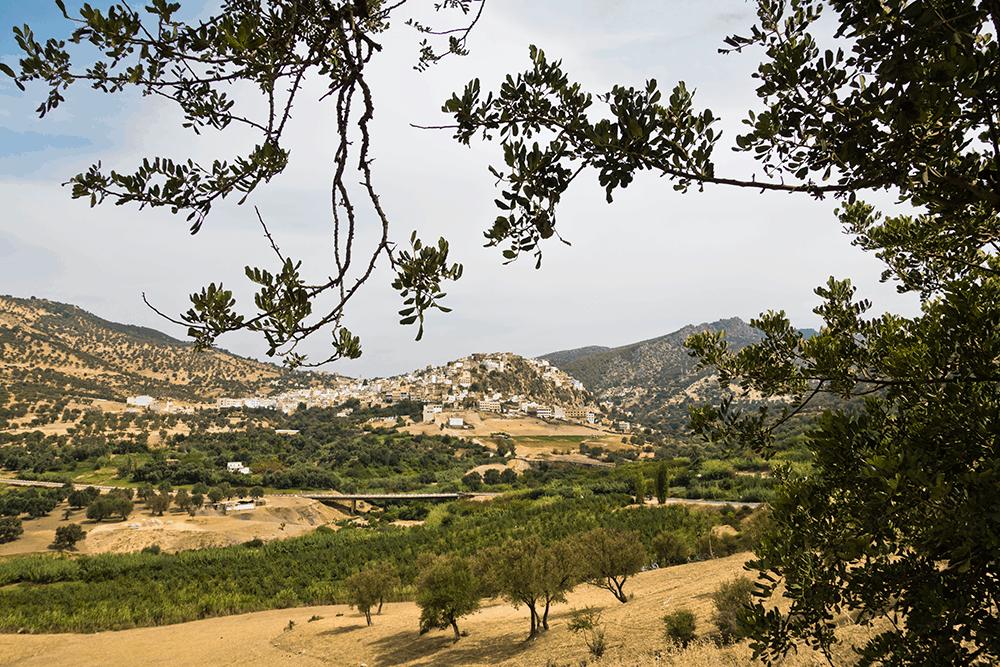 Die Stadt Meknès
