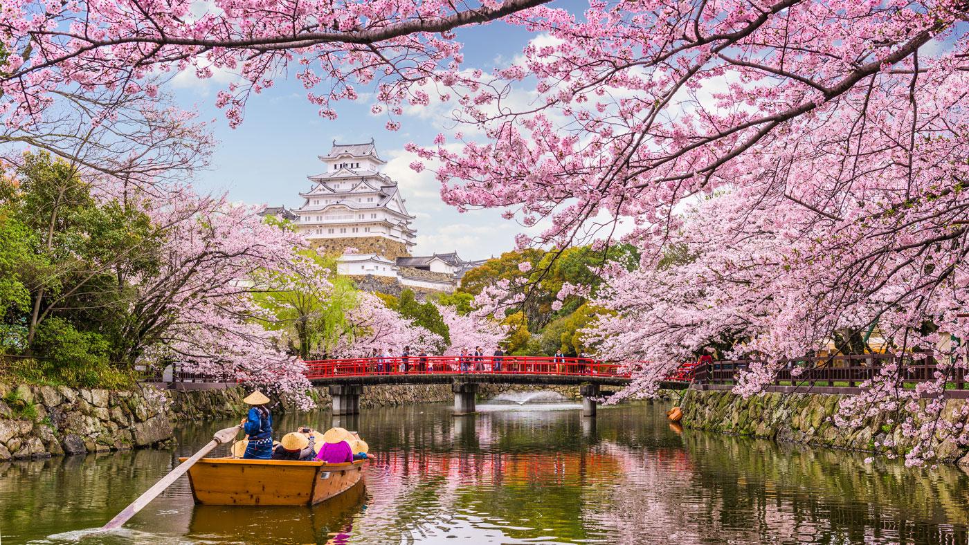 Zur berühmten Burg Himeji sind es etwa 1,5 Stunden Fahrt