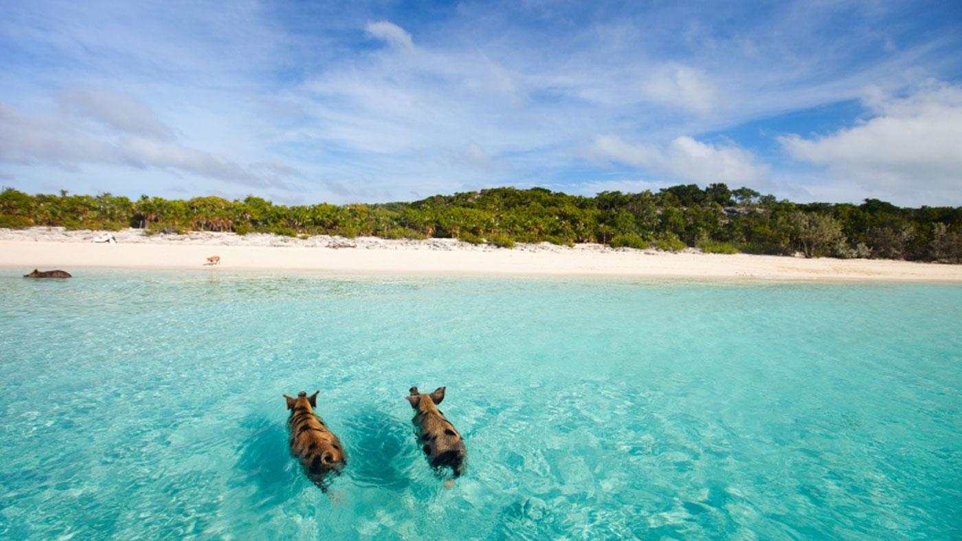 Bahamas,